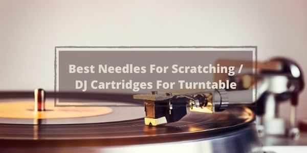 Best Needles For Scratching